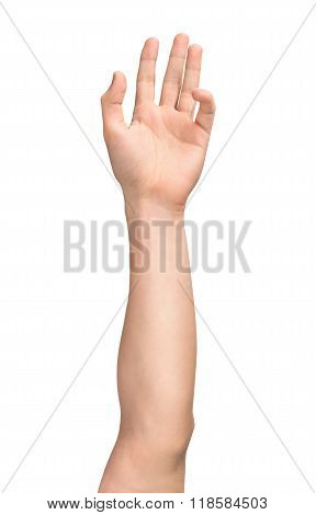 Men's Elongated Hand On An Isolated White Background