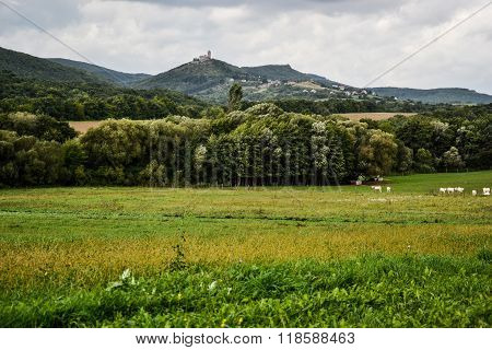 Autumn Pasture And View On Castle Hills Livestock, Field Of Grass,blue Sky And Clouds, Landscape Hil