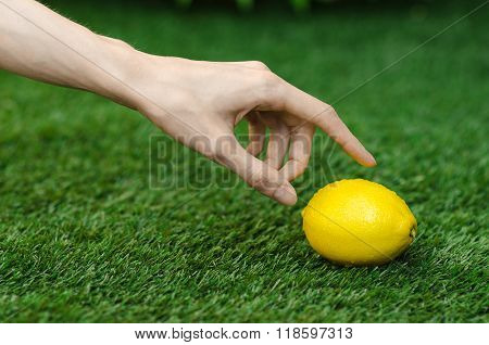 Vegetarians And Fresh Fruit And Vegetables On The Nature Of The Theme: Human Hand Holding A Yellow L