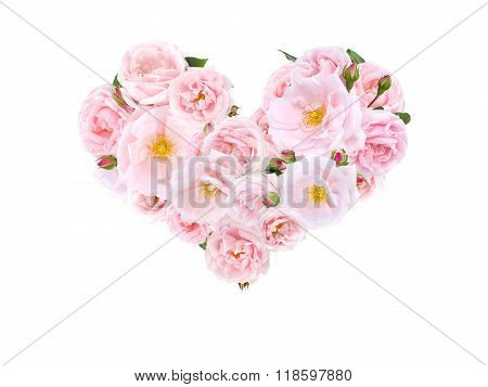 Heart Of Pale Pink Roses And Buds