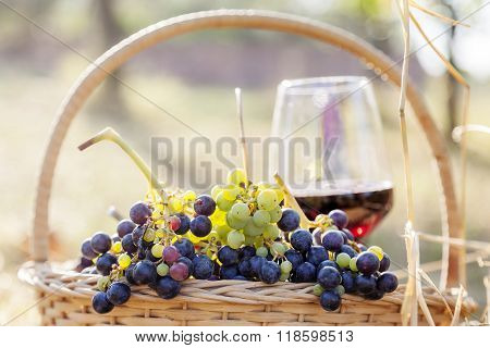 Grapes In A Basket And Wine Glass On In Rural Areas