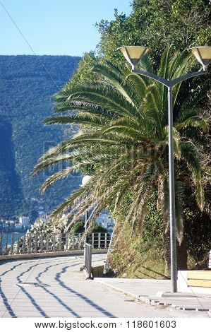 Walkup in Herceg Novi