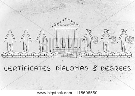 Certificates, Diplomas & Degrees, From Students To Graduates