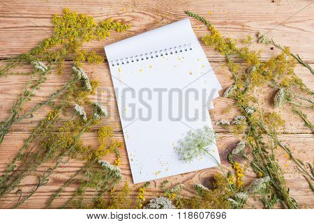 Notepad And Medicine Herbs On Wooden Table - Alternative Medicine Concept