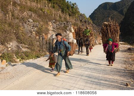 Minority Asian group of Hmong carrying firewood and agriculture product home