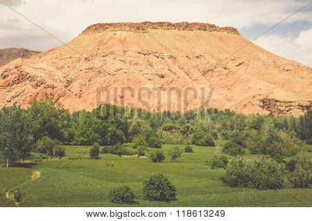 Red Rock Limestone Fingers In Dades Gorgem Morocco, Africa