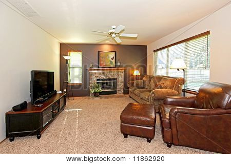 Living Room With Leather Chair And Fireplace