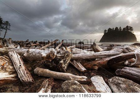 Olympic National Park landscapes