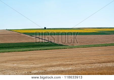 Arable farmland.