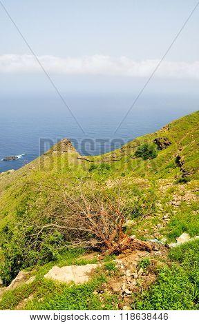 Coastline On The Island Of Brava