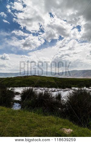 A Waterhole Of The Ngorongoro Crater