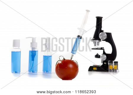 genetically modified vegetables tomato vaccine on white background