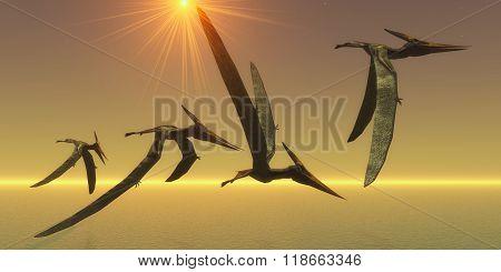 Pteranodon Reptile Flight