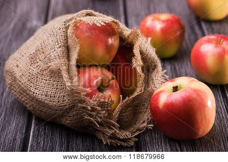 Ripe Apples Fall Out Of Sack