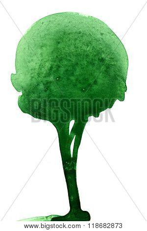 Green Tree Wash Drawing
