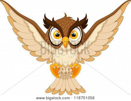 Owl pounce cartoon