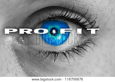 Profit Eye Looks At Viewer Concept Macro