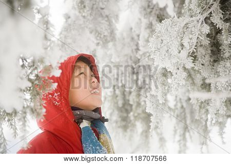 Boy and snow covered trees