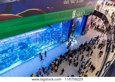 Aquarium In Dubai Mall