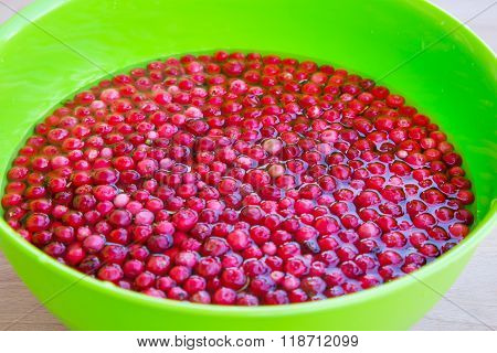 Vibrant texture background with fresh organic cranberry in the water