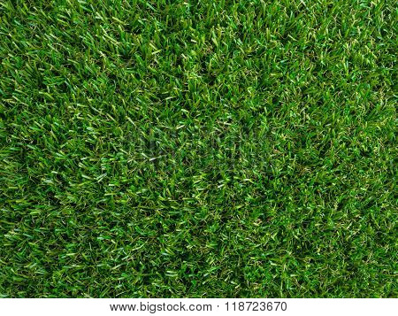 Artificial Green Grass Texture