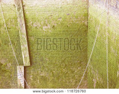 Green Moss Vintage