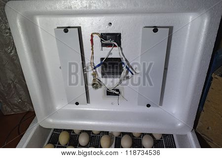 Internal Device Of A House Incubator.