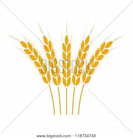 Wheat ears or rice icon. Crop symbol. Design element for bread packaging or beer label. Vector.
