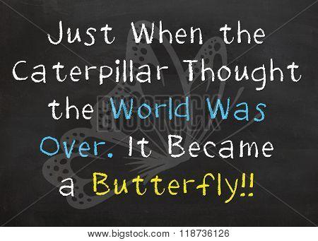 Caterpillar into Butterfly