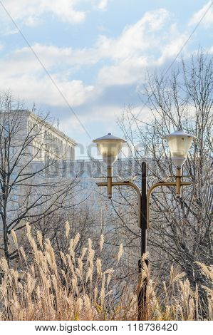 Bucharest Parliament Building With Public Lamp In Front In Winter. Foggy Vertical Winter View With P