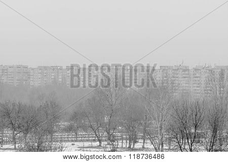 Frozen Dry Trees In Winter And City Panoramic Buildings. Black And White Winter Picture With Brown D