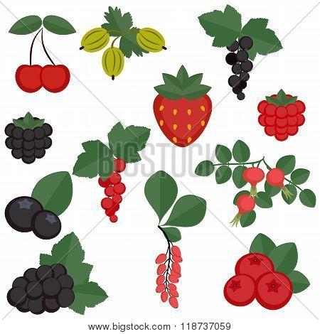 Set Of Juicy Berries.