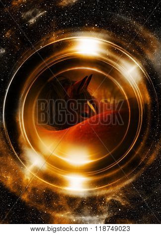 Horse in space, in circle light. Mirror on the planet Earth. Animal concept,  Profile portrait.  Sep