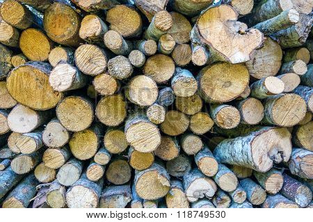 Close-up photograph of a pile of wood logs ready for winter - dry chopped firewood