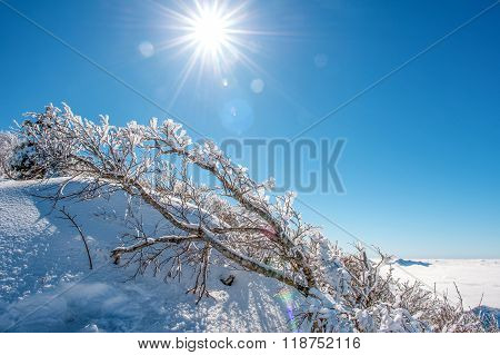 Seoraksan Mountains Is Covered By Snow In Winter, Korea.