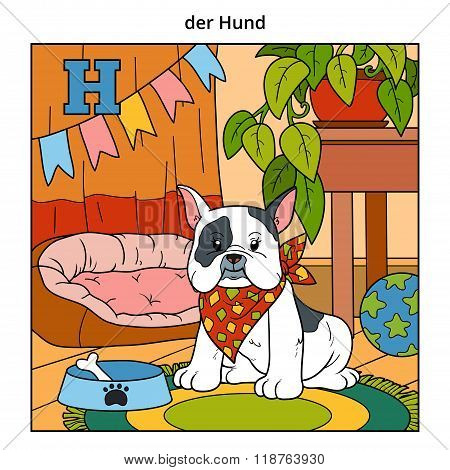 German Alphabet, Letter H (dog And Background)