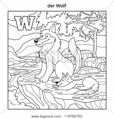 German Alphabet, Letter W (wolf And Background)