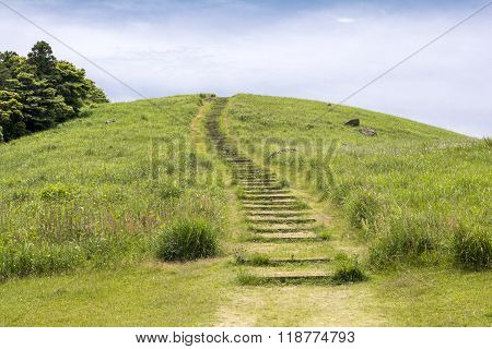 Green hill with wood stairs