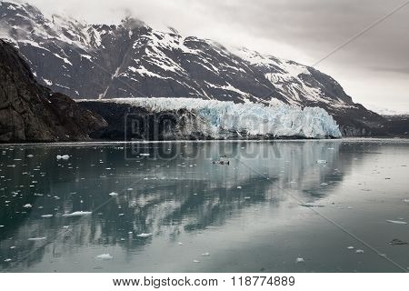 Ocean view of the Margerie Glacier