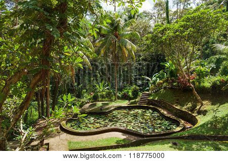 Pond With Lotuses In Goagajah Temple (elephant Cave Temple). Ubud, Bali Island, Indonesia.