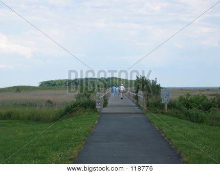 Weekend Walk