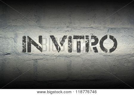 In Vitro Gr