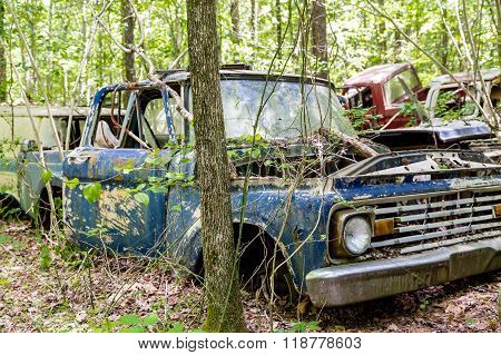 Blue Pickup Wrecked In Woods