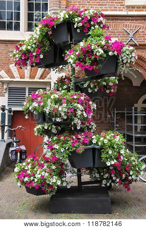 Decorative Floral Composition In The Historic Centre Of Haarlem, The Netherlands