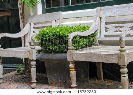 Traditional Dutch Wooden Benches Surrounded By Decorative Plants On The City Street