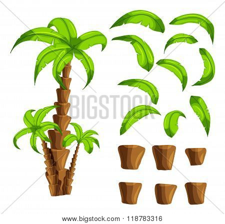 Cartoon Elements The Palm Trees On A White Background. Set Of Isolated Objects Of A Tropical Tree Tr
