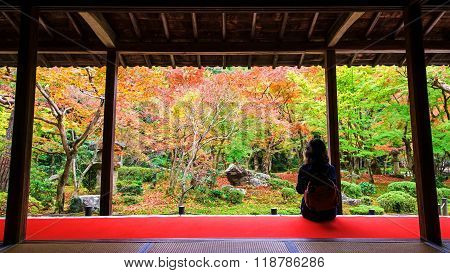 Woman In Enkoji Temple Enjoys Autumn Garden