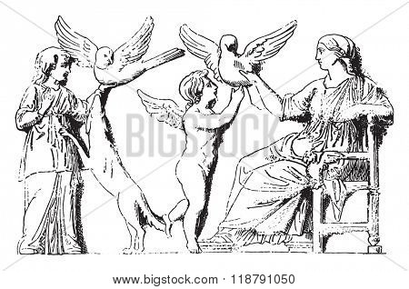 Familiar doves, On a bas relief after the Capitoline Museum, vintage engraved illustration. Magasin Pittoresque 1878.