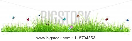 Green Grass With Flowers And Butterflies
