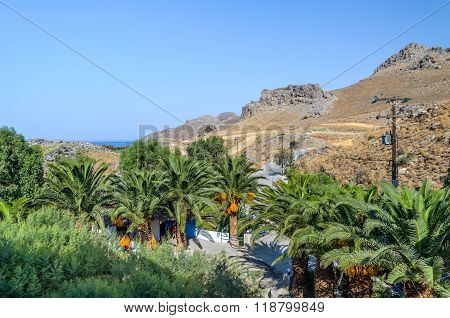 AGIA GALINI, CRETE, REECE - AUGUST  20, 2013: Beautiful palms near house on Crete island, Greece